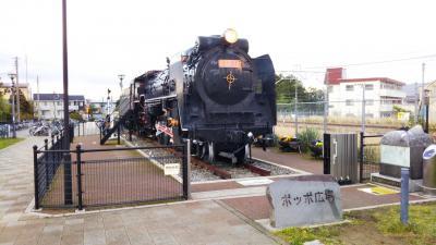 御殿場線、蒸気機関車D52との出会い、街歩き☆