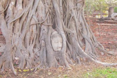 タイ・バンコクとアユタヤ周遊の旅7