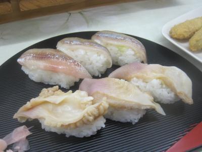 2017 久々の北海道!まずはむかわ町でししゃもをガッツリ食らいます