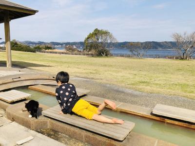 ふらりと鹿児島の温泉へ!その3「桜島癒猫」