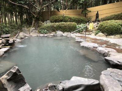 ふらりと鹿児島の温泉へ!その4「さくらさくら温泉で全身泥パック!」