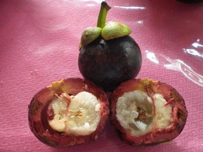 インドネシア、東ティモール、タイ等の各地で果物の美味しさを満喫しました。