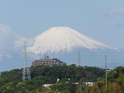 ようやく姿を現した富士山-2020年春