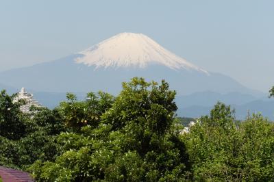 予想外に姿を現した富士山-2020年春