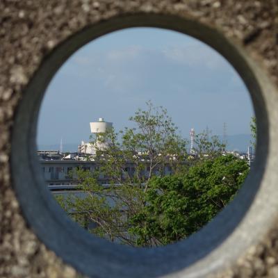 滝の水公園で,名古屋のスカイラインを見ながら,社会の将来を考える。
