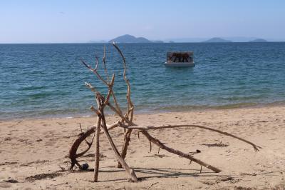 瀬戸内国際芸術祭2019を追憶 粟島