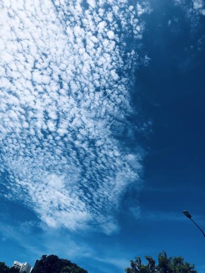 2020年5月9日の空は綺麗だった。
