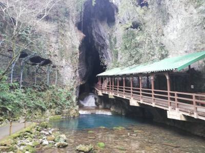 「どこかにマイル」で行った 日帰り旅行 北九州・山口ツアー(3)