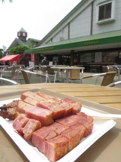 自転車で行ける豚のテーマパーク「サイボクハム」でちょっぴり観光気分を味わう&後日のテイクアウト弁当と買い食い