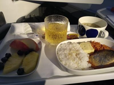 2020年1~2月大阪一時帰国(主に飛行機移動の記録)