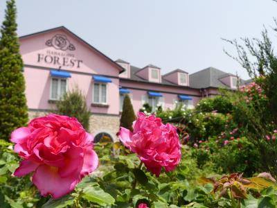 「花園フォレスト」のバラ_2020_散り残った花はありますが、見頃終了(埼玉県・深谷市)