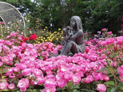 '20 千葉市川バラさんぽ2 須和田公園のバラ