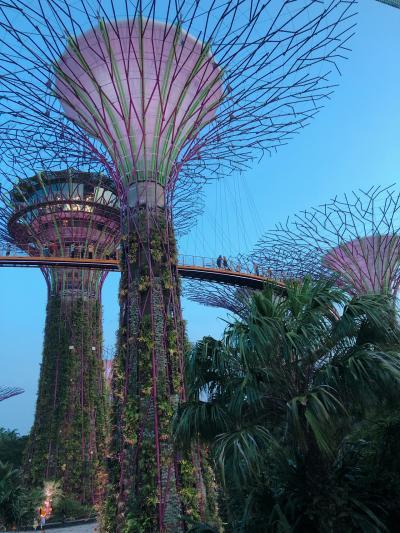 【2020】シンガポール旅行①
