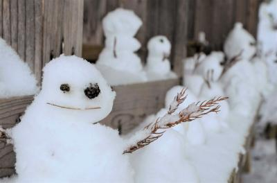 冬の会津旅(2)~晴れの鶴ヶ城と吹雪の大内宿
