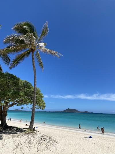 やっぱり綺麗180°カイルアビーチと波の音(動画)