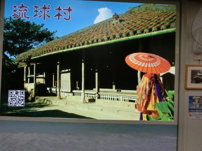 2020冬・台湾南部と沖縄の旅(その10)那覇~関空→自宅