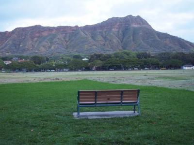 美しいロックダウンの中のハワイ①