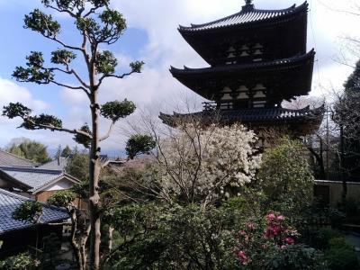 當麻寺および西南院~玉や~一言主神社