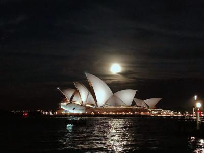 【シドニー/オーストラリア】街歩き ◆MAY/2020◆