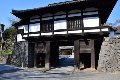 長野県:上田藩主居館、上田城、龍岡城、小諸城、松代城、真田邸、横山城(その2)