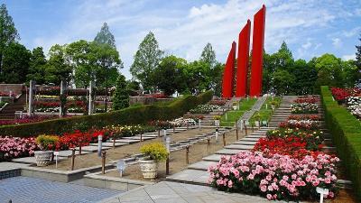 みどりのプラザと荒牧バラ公園に咲く花 その3。