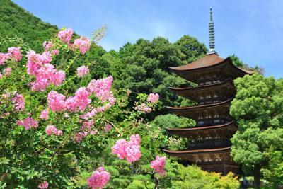 2018 盛夏の長州路をゆく《Part.1》~大内文化が香る西の京・山口探訪~
