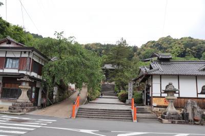 奈良 長谷寺2020年初夏