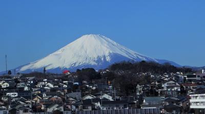 家族旅行2020冬プロローグ・京都その1,新幹線の窓に映った富士