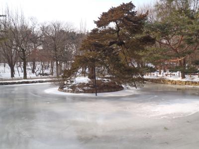 4人で行く真冬のソウル3日間(2011年1月)宗廟、南大門市場、仁寺洞、三清洞、北村、徳寿宮など
