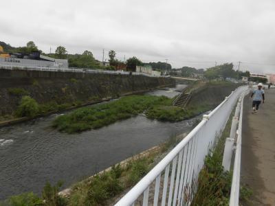 2020春:鶴見川の河口18.0km地点から源流あと5kmまで、さかのぼってみた