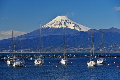早春のお花見・富士山眺望ドライブ旅行(2)-長八美術館・伊那下神社・富士山眺望ドライブ等ー