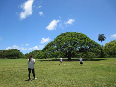 ☆メモリー☆彡 初めてのハワイ ①