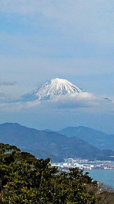 行っちゃう?どうする?静岡日帰りバスツアー 富士山・沼津・いちご狩り♪の巻
