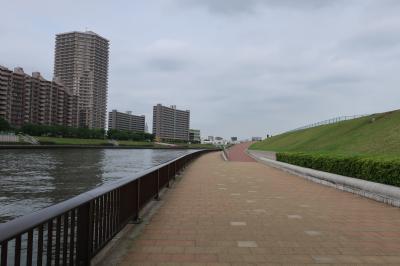 千住隅田川テラスから荒川自然公園へウオーキング 5月/2020