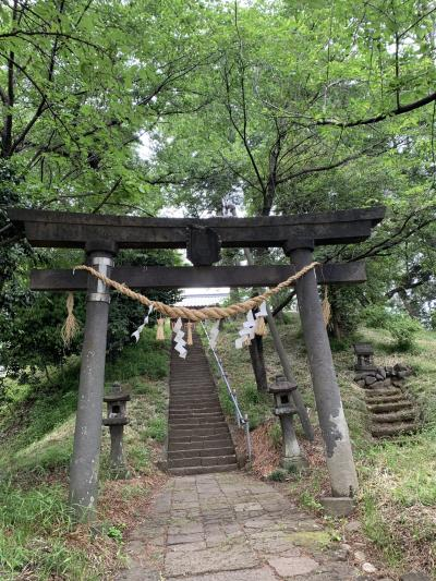 お富士山古墳と鶴巻古墳史跡公園
