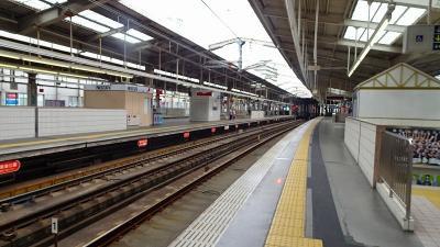 久し振りの長距離散歩で、阪急川西能勢口駅まで行きました その4。