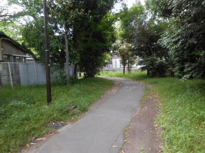 新型コロナ自粛中、ご近所散歩 その7 高津駅周辺