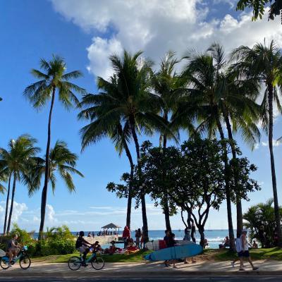 渡航制限から2か月経過のハワイ…