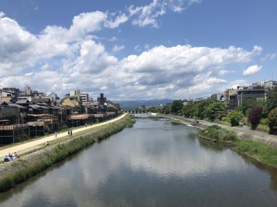 自粛解除!息抜きの京都散歩☆高台寺