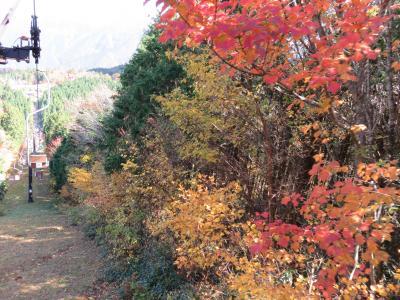 石鎚山ロープウェイから紅葉
