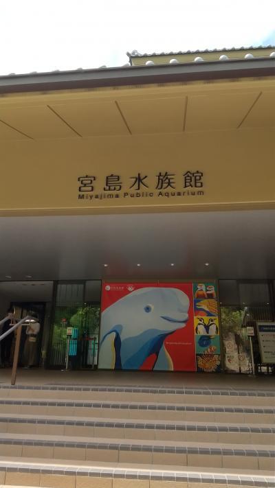 宮島水族館を回る