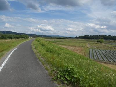 京田辺 木津川CR山城大橋上流(Kizugawa Cycling Road Kyotanabe Upper Part, Kyoto, JP)