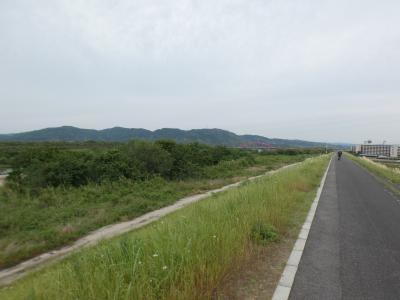 京田辺 木津川CR山城大橋下流(Kizugawa Cycling Road Kyotanabe Lower Part, Kyoto, JP)