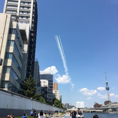 東京の空に感謝のブルーインパルス!(と、香港の今)←またか(;^_^A