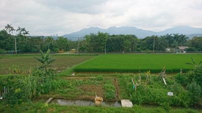 淡水行:淡水河-關渡平原