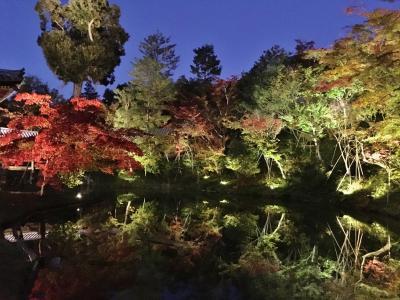 食と紅葉巡り秋の京都を満喫♪2018