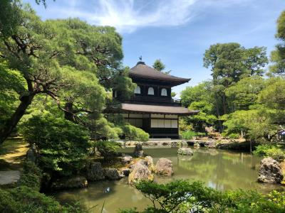 地元民が京都大メジャー観光地に行ってみた 第2弾