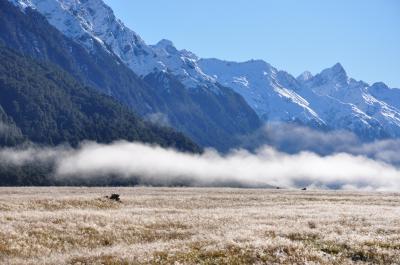母と娘 ~NZ南島 湖求めて三千里~ 5日目