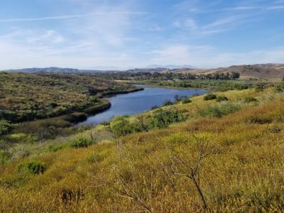 湖のある公園で野ウサギや野鳥を見ながらハイキング