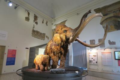 二度目のベルガモ! ドニゼッティ博物館から自然史博物館へ